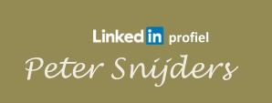 151101 webpagina Peter LinkedIn