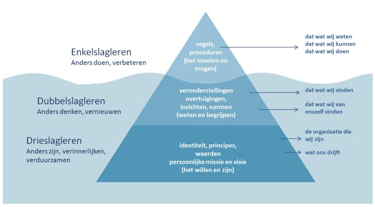 Drieslagleren en de ijsberg van McClelland - organisatie niveau